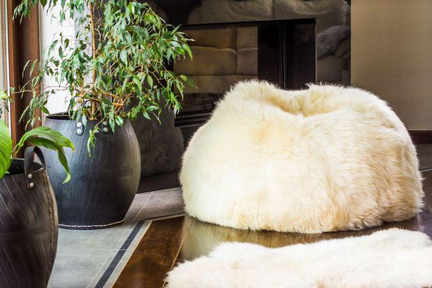 Meble wykończone futerkiem ocieplą nasze wnętrze i sprawią, że stanie się bardziej przytulne i zachęcające do wypoczynku. Czy może być coś lepszego na długie jesienne wieczory?