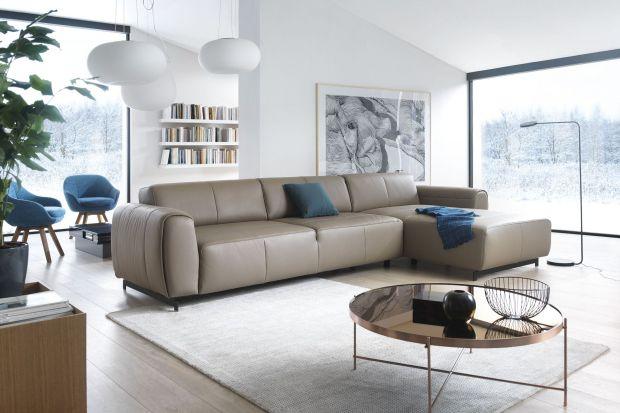 Jak wybrać sofę w salonie meblowym - porady eksperta