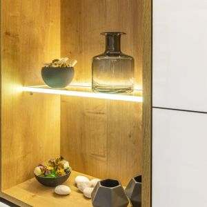 Oświetlenie pełni funkcję nie tylko użytkową, ale też dekoracyjną, np. rozświetlając wnętrza półek. Fot. GTV