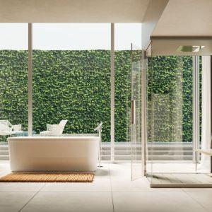 Kolekcja marki Glass Paso Doble pięknie prezentuje się na tle dzikiej zieleni wkradającej się do wnętrza. Fot. Glass