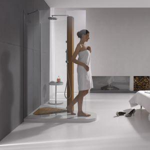 Sypialnia połączona z łazienką, ogrzewana kominkiem – kabina prysznicowa typu walk-in to model Trio firmy VitrA. Fot. VitrA