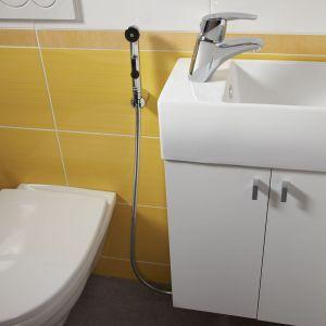 Bateria umywalkowo-bidetowa z raczka natrysku z serii Metalia 56. Fot. Ferro