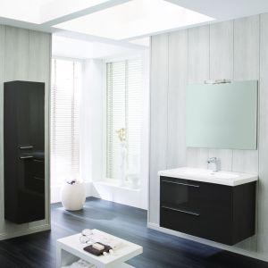 Ciemne meble łazienkowe z kolekcji Marsylia marki Elita. Fot. Elita