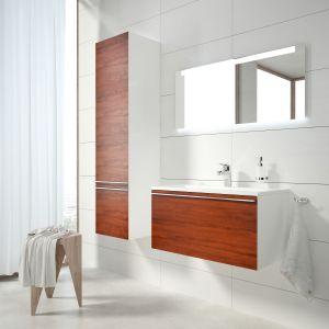 Meble łazienkowe z konceptu Clear firmy Ravak