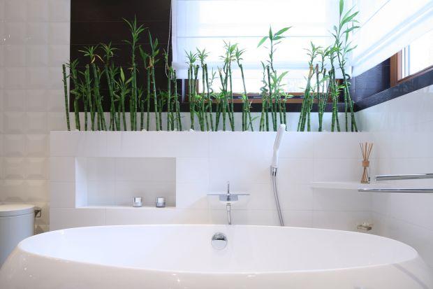 Odrobina naturalnej zieleni w łazience nada wnętrzu charakter eleganckiego salonu kąpielowego i ożywi aranżację.