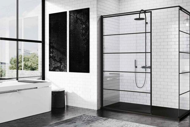 Urządzając strefę natrysku do wyboru mamy rozmaite rodzaje kabin prysznicowych. 20 modnych modeli możecie zobaczyć u nas.