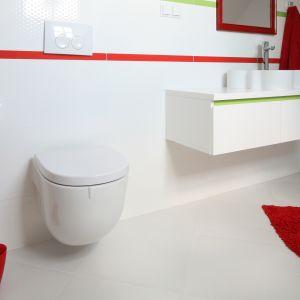 Humorystycznym akcentem w strefie WC może być szczotka toaletowa z... łypiącym okiem! Proj. łazienki: Katarzyna Merta-Korzniakow. Fot. Bartos Jarosz