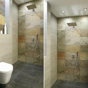 Wnęka-półka w strefie prysznica i większa wnęka nad zabudową stelaża w.c. Proj. Piotr Stanisz. Fot. Bartosz Jarosz
