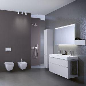 Meble łazienkowe z kolekcji Smyle marki Geberit. Fot. Geberit