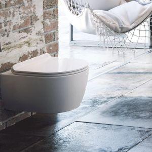 Czarne matowe stojak na papier i szczotka WC z serii akcesoriów łazienkowych Riko. Fot. Excellent