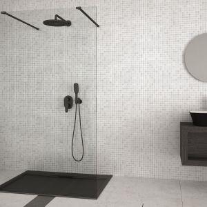 Kabina prysznicowa typu walk-in z czarnymi profilami Aveo marki Besco. Fot. Besco