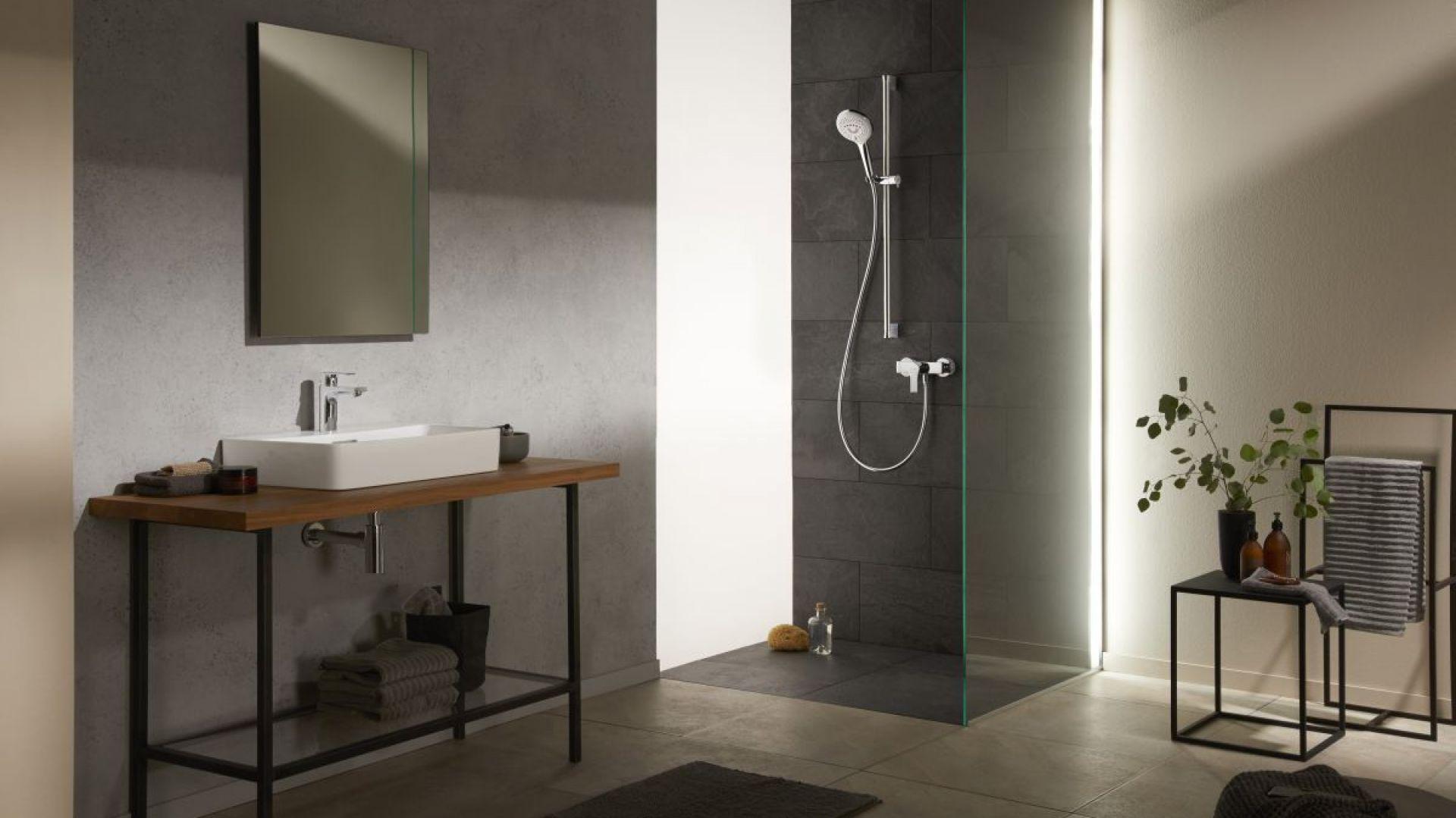 Armatura łazienkowa z serii Kludi Zenta SL. Fot. Kludi
