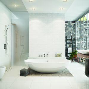 Pomysł na aranżację przestronnej łazienki.  Na widocznym zdjęciu posłużono się produktami Ferro: pojemnikiem na kosmetyki, kubkiem, a także pojedynczym wieszakiem na ręczniki. Fot. Ferro