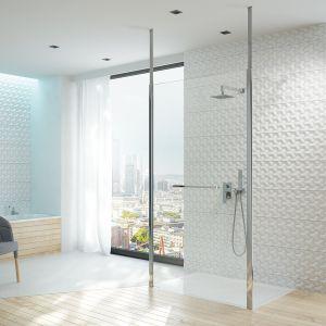 Kabina prysznicowa typu walk-in PII/ALTIIa marki Sanplast. Fot. Sanplast