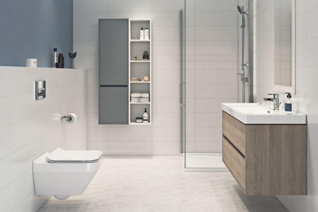 Higiena w łazience jest niezwykle ważna. W utrzymaniu czystości pomóc może dobrze dobrane wyposażenie jeszcze na etapie urządzania wnętrza.