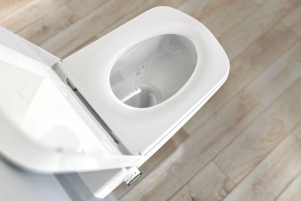 Toalety myjące stają się coraz popularniejszym elementem wyposażenia łazienki. Jak jednak wybrać właściwy model? Przeczytajcie nasz poradnik?