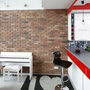 Ceglana ściana to akcent w stylu loft - jeden z wielu w tym wnętrzu. Projekt Monika Olejnik. Fot. Bartosz Jarosz.