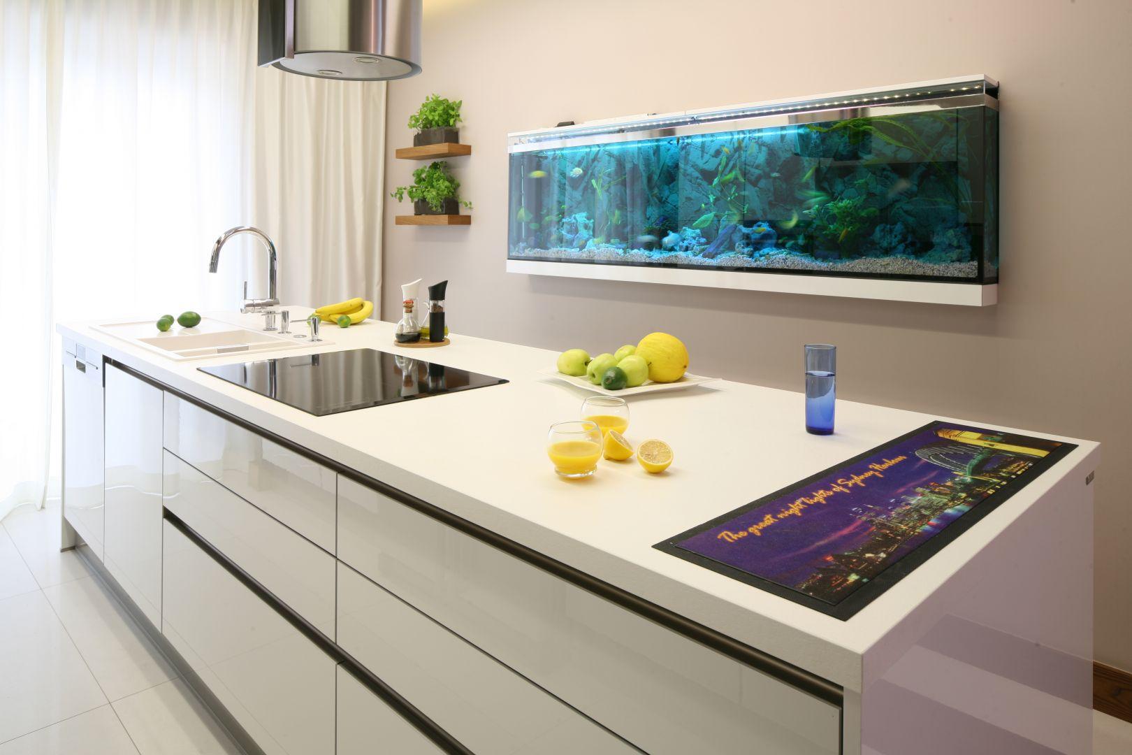 Niebieski w kuchni. Projekt Chantal Springer. Fot. Bartosz Jarosz.