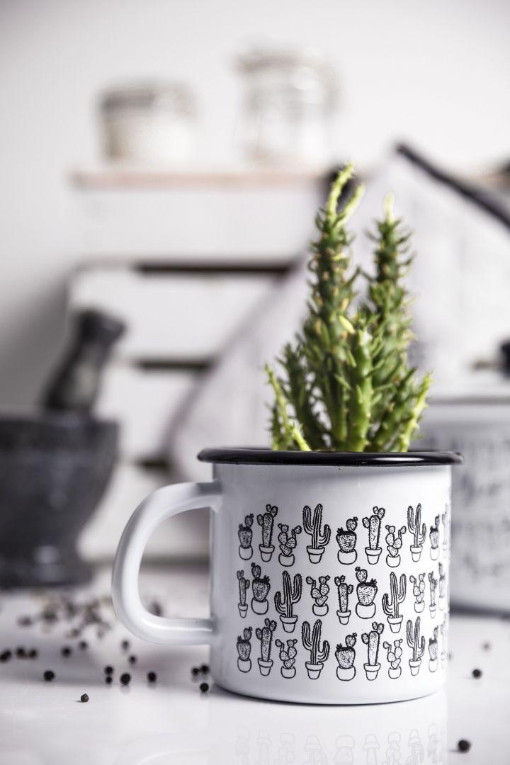 Florina Cactus