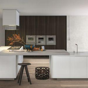 5 pomysłów na białe meble do dużej kuchni. Fot. Polimat