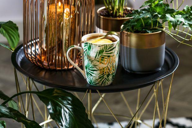 Szeroki wybór modnych akcesoriów i dekoracji pozwala na stylową aranżację wnętrza każdego domu. Aby je dopełnić, warto zdecydować się na namiastkę natury w mieszkaniu. Właściwie dobrana roślina może nie tylko ożywić wnętrze, dodać mu c