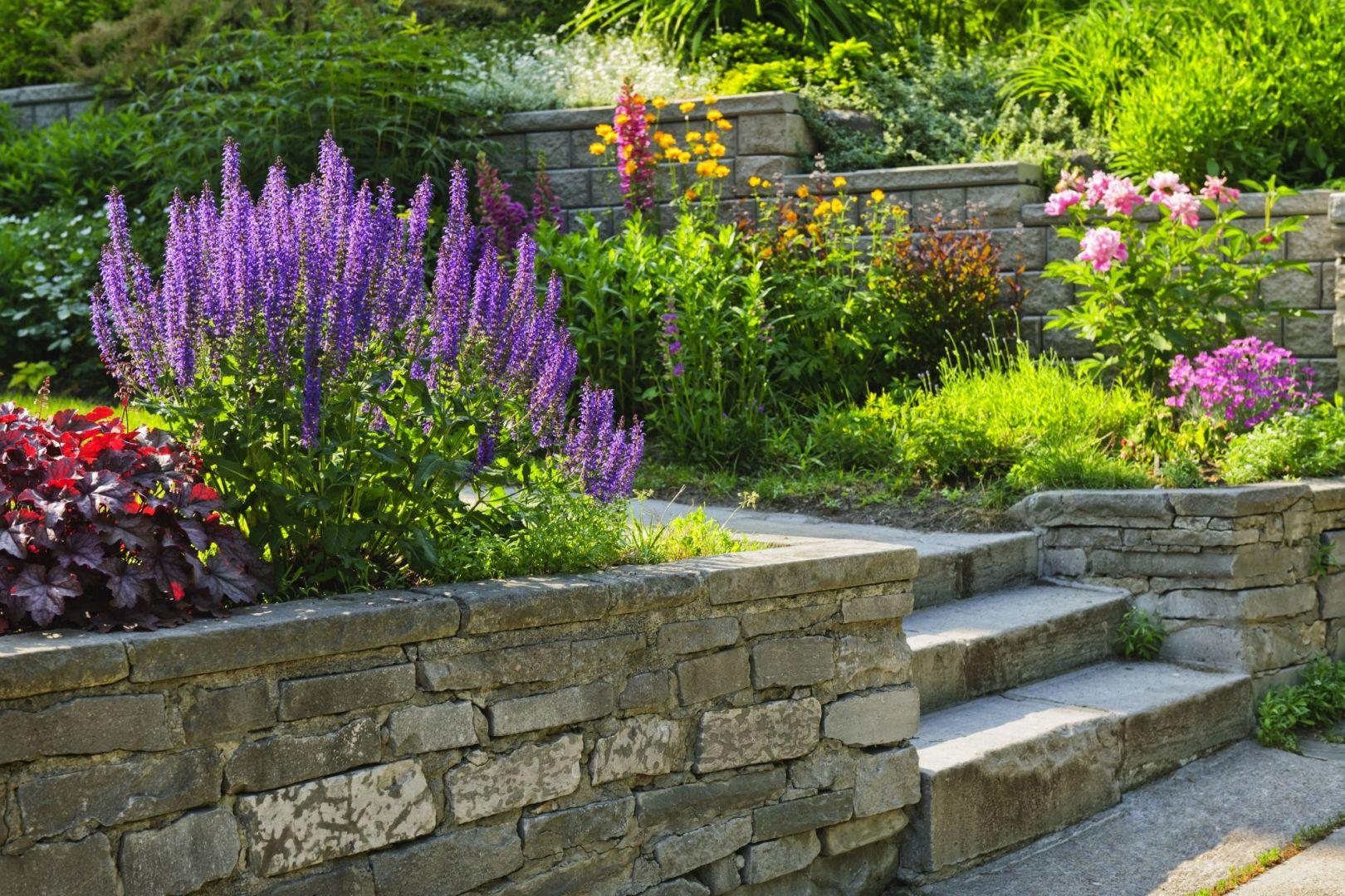 Schody w ogrodzie. Zasady ich projektowania. Fot. Shutterstock
