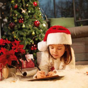 Poinsencja, czyli gwiazda betlejemska w świątecznych stylizacjach. Fot. Stars for Europe