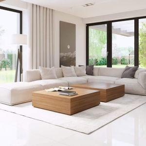 Wnętrze domu HomeKONCEPT 15 urządzono w nowoczesnym, minimalistycznym stylu. Projekt: HomeKONCEPT 15. Fot. HomeKONCEPT