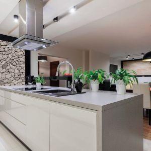 Fot. TechniStone® - Elegance Eco Ash