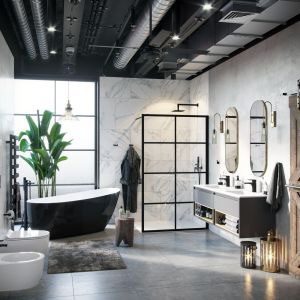 Ściana prysznicowa Fabrika. Fot. Excellent