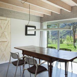Drzwi drewniane Radex Loft XX. Fot. 4iQ