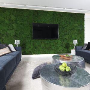 Ściana żywej zieleni prezentuje się niezwykle efektownie w przestronnym salonie. Projekt: Dariusz Grabowski. Fot. Bartosz Jarosz