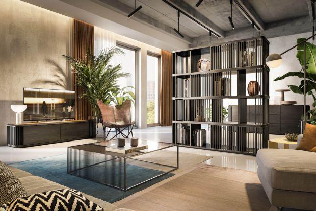 Nowa kolekcji mebli skrzyniowych do salonu nie tylko wyróżnia się stylowym designem, ale równieżoferujemożliwość customizacji.
