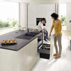 Systemy z serii Blanco Select  do szafek z wysuwanymi frontami; z pojemnikami na odpady oraz szufladami organizacyjnymi. Fot. Comitor