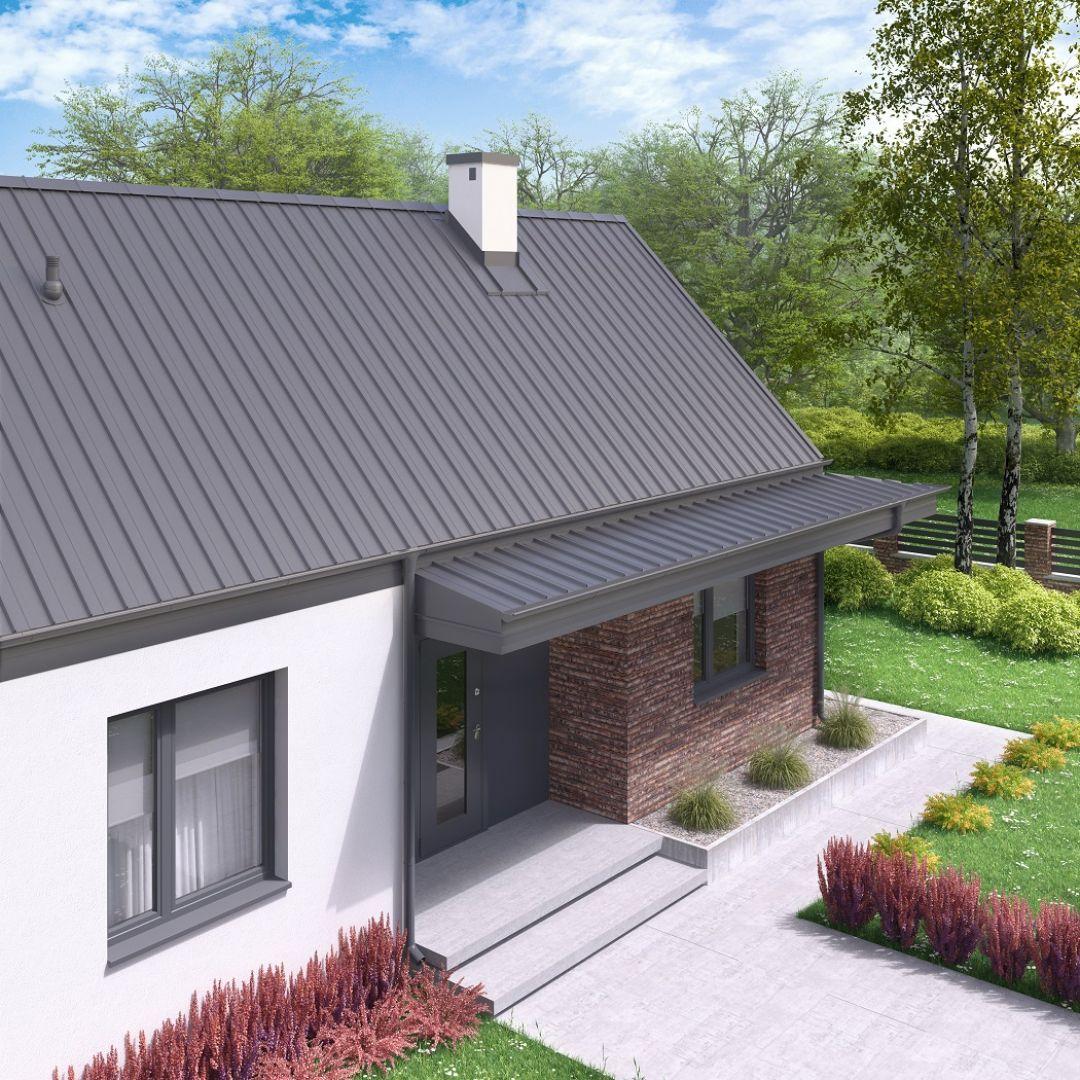 Panele dachowe przeżywają obecnie swój renesans. Fot. Regamet