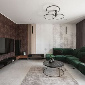 Nowoczesne wnętrze inspirowane naturą. Projekt: Kaza Interior Design. Fot. Przemysław Kuciński