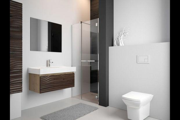 Aranżacja małej łazienki spędza sen z powiek wielu z nas. Często wydaje nam się, że własnymi siłami nie poradzimy sobie z jej urządzeniem. Nic bardziej mylnego. Na rynku dostępnych jest wiele rozwiązań, które sprawiają, że samodzielnie bę