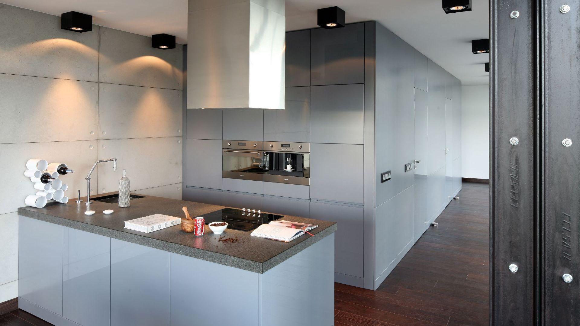 Zabudowa kuchenna oraz lodówka zostały umiejscowione we wstawionym we wnętrzu kubiku. Projekt: Justyna Smolec. Fot. Bartosz Jarosz