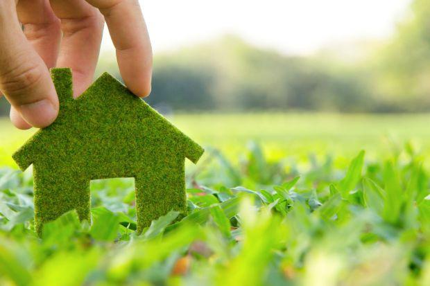 Czy zmywarka jest ekologiczna? Świetny patent na ekotabletki do zmywania