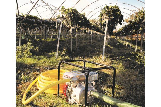 Skutkiem ubiegłorocznej suszy, gwałtownych opadów deszczu latem powodujących niewsiąkanie wód opadowych w suchą glebę i efektem bezśnieżnej zimy jest niska wilgotność gleby, która w styczniu br. na niektórych obszarach kraju osiągnęła 40%