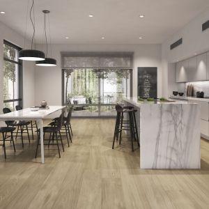 Salon połączony z kuchnią i jadalnią. Projekt: Fot. Etile