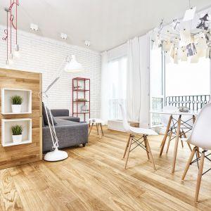 Oświetlenie w salonie. Projekt i zdjęcie: Naturistic Design