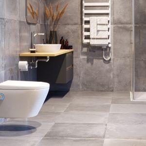Toaleta myjąca DAKOTA D1. Dostępna w ofercie firmy Excellent. Fot. Excellent
