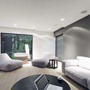 Szarość ściany i designerskie meble wypoczynkowe doskonale pasują do nowoczesnej stylistyki. Fot. zw A