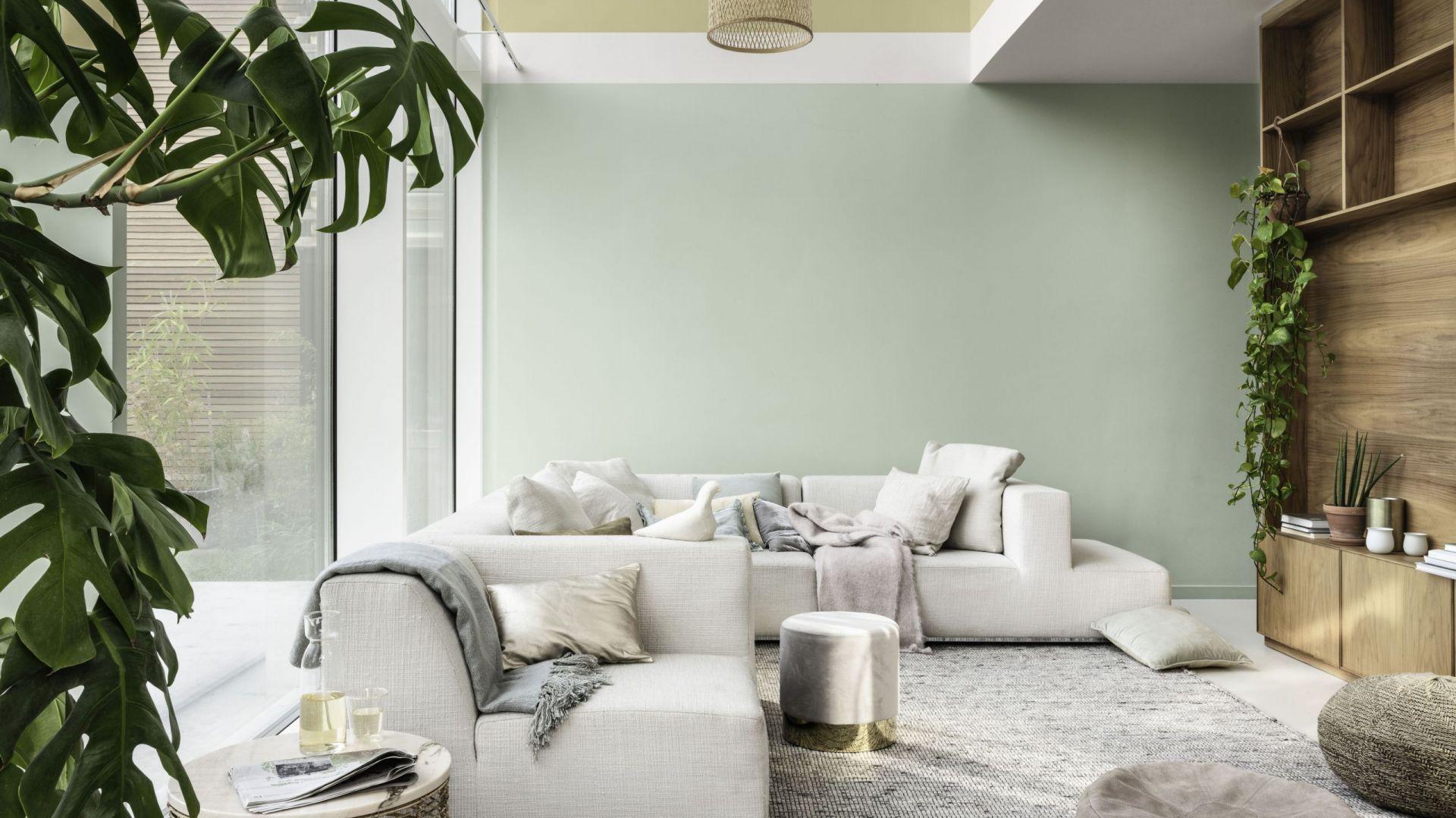 Delikatny, pastelowy odcień zieleni, przełamanej szarością i błękitem Miętowa Szarość. Fot. Dulux