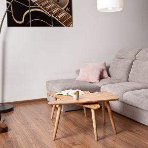 Jasne, chłodne odcienie sprawiają, że pomieszczenia wydają się bardziej przestronne. Fot. Paged Meble