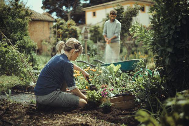 Wiosna w ogrodzie - 5 niezbędnych narzędzi