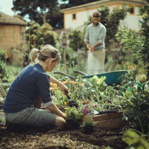 Rodzina narzędzi XactTM do pielęgnacji małych roślin,  oprócz łopatki znajdziemy również grabie, skrobak, odchwaszczacz i kultywator. Fot. Fisakrs