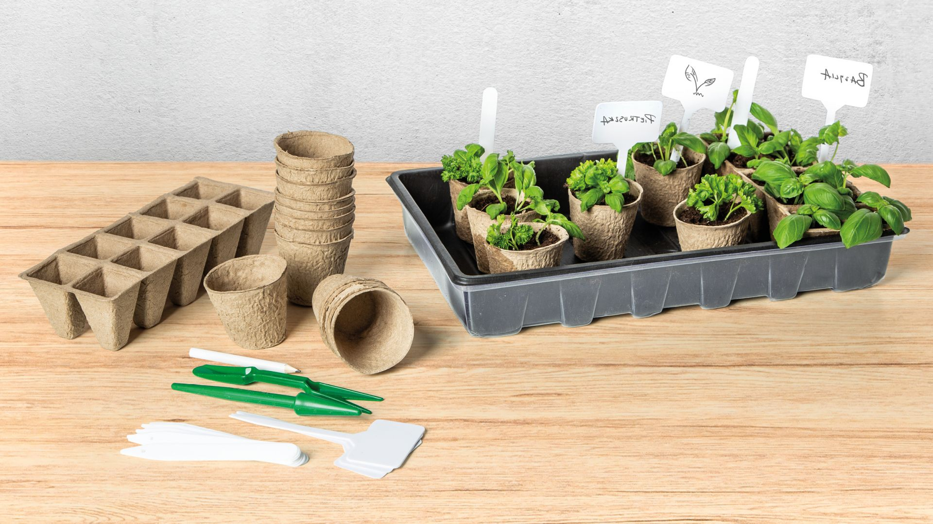 Przy hodowli roślin przydatny będzie duży zestaw do rozsad, który zawiera pojemniki i kubki papierowe, etykiety, widelec i tacę z pokrywką oraz matę.  Fot. Netto