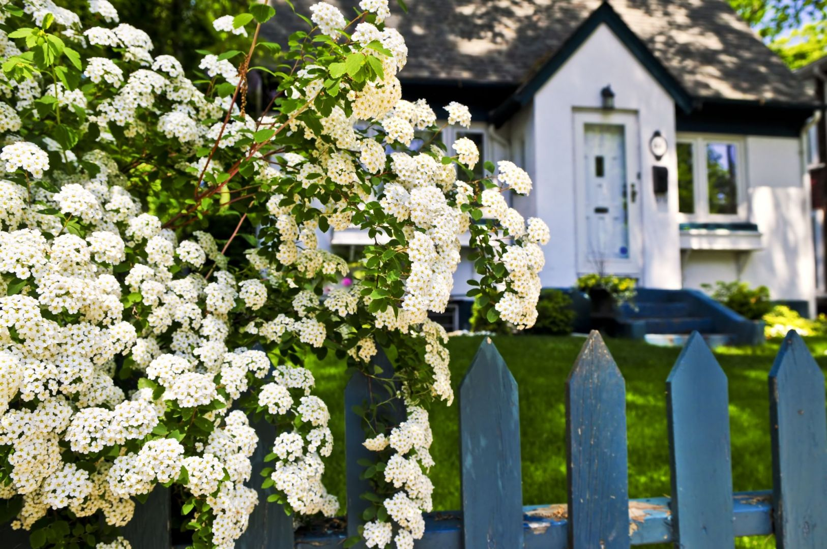 Otoczenie domu: dlaczego warto wykonać projekt ogrodu? Fot. Shutterstock
